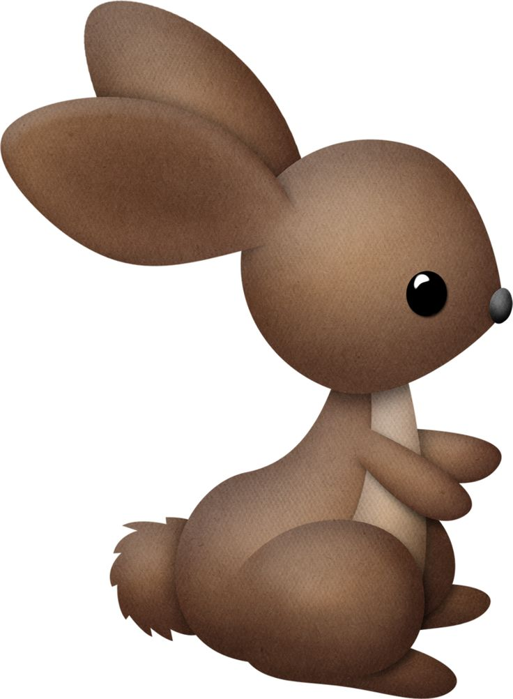 Bunny Tail Clipart