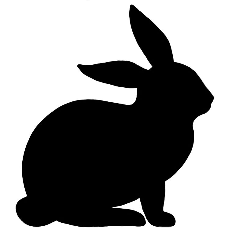 736x776 Amd Clipart Rabbit