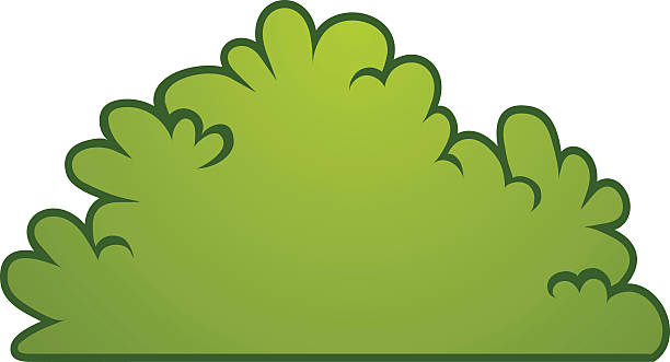 Bush Clipart | Free download best Bush Clipart on ...