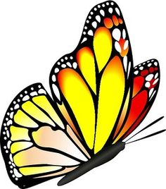 236x268 Butterfly Clip Art Clip Art, Butterfly And Butterfly Drawing