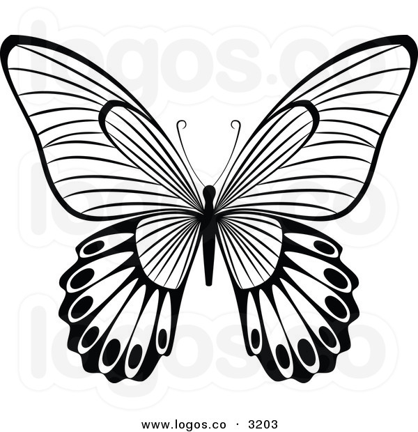 600x620 Butterfly Clipart Black And White Clipart Panda