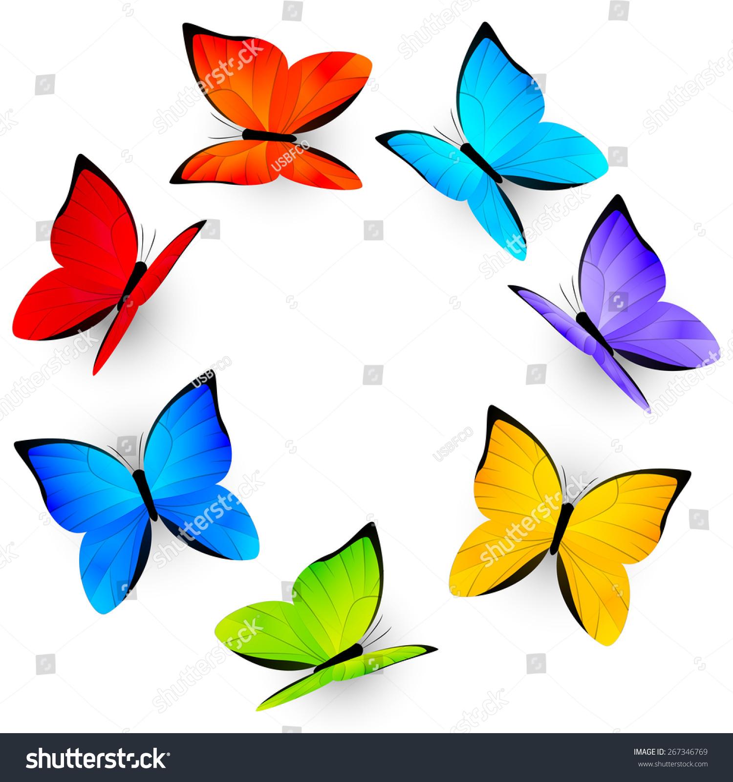 1500x1600 Rainbow Butterfly Clipart Borders Vector