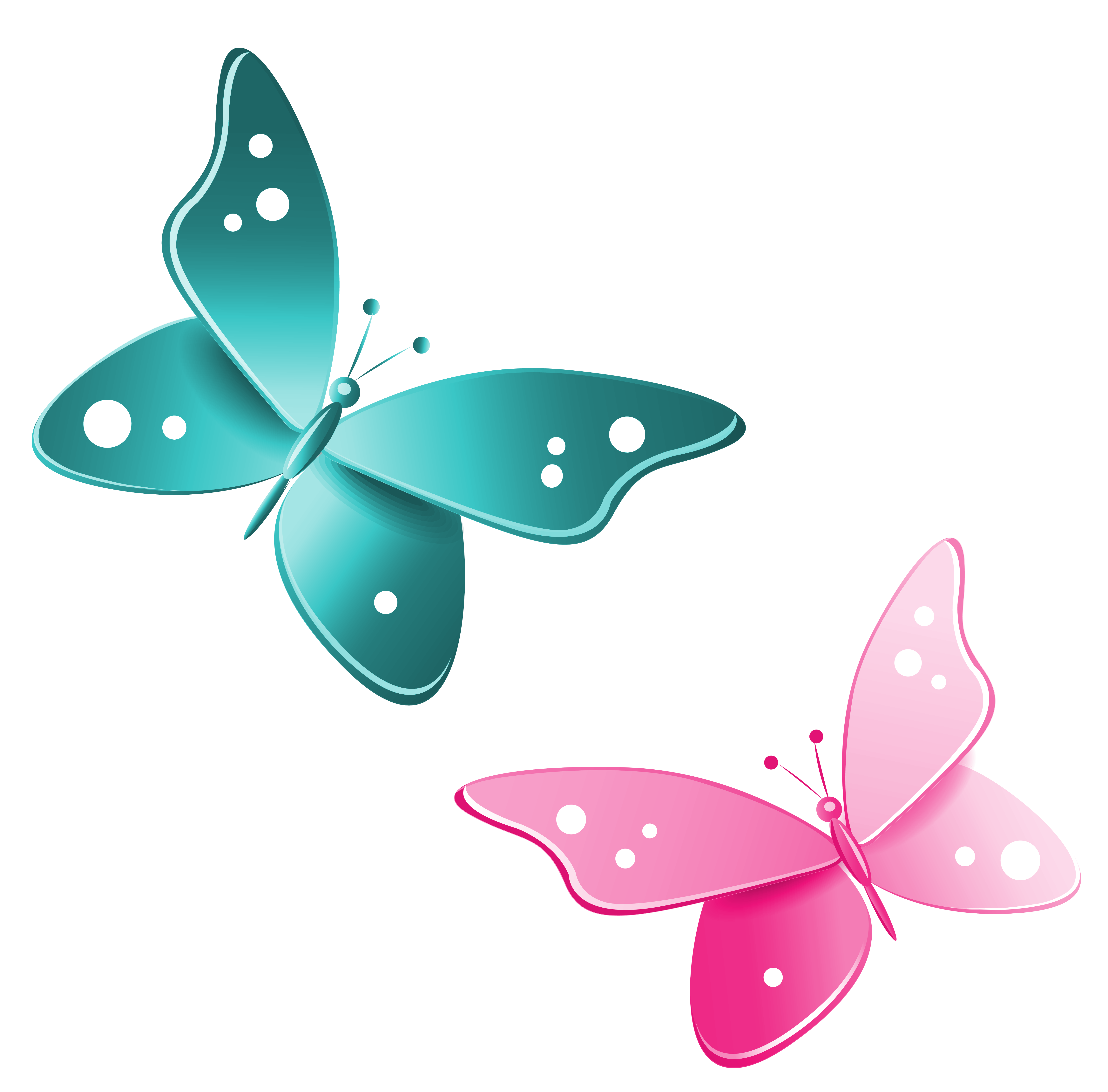 Green And Blue Bedroom Butterflies Clipart Border Free Download Best