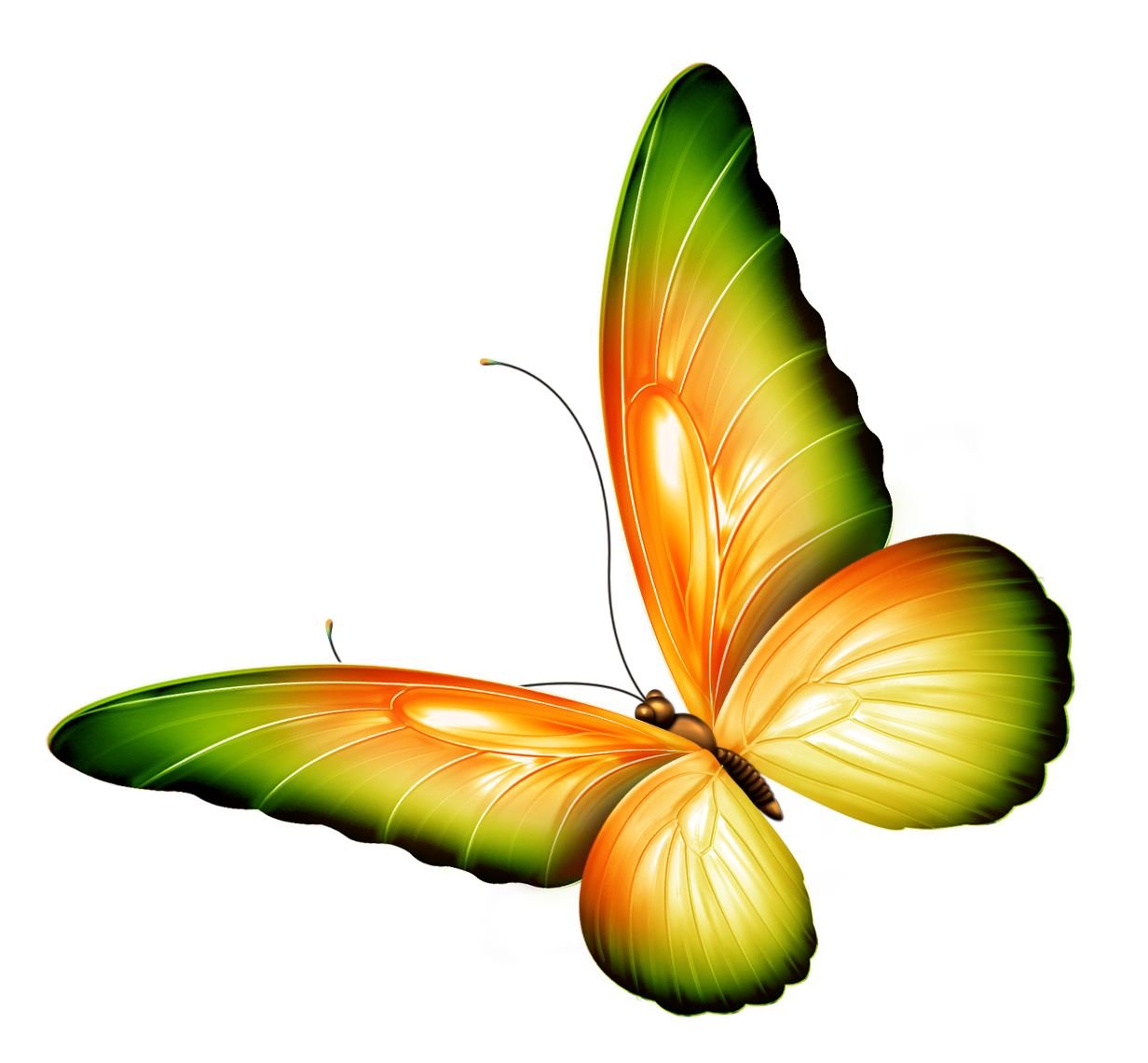 1232x1140 Yellow And Green Transparent Butterfly Clipartu200b Gallery