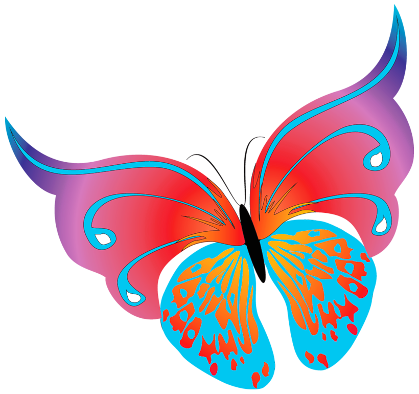 820x770 Butterfly Clipart Free
