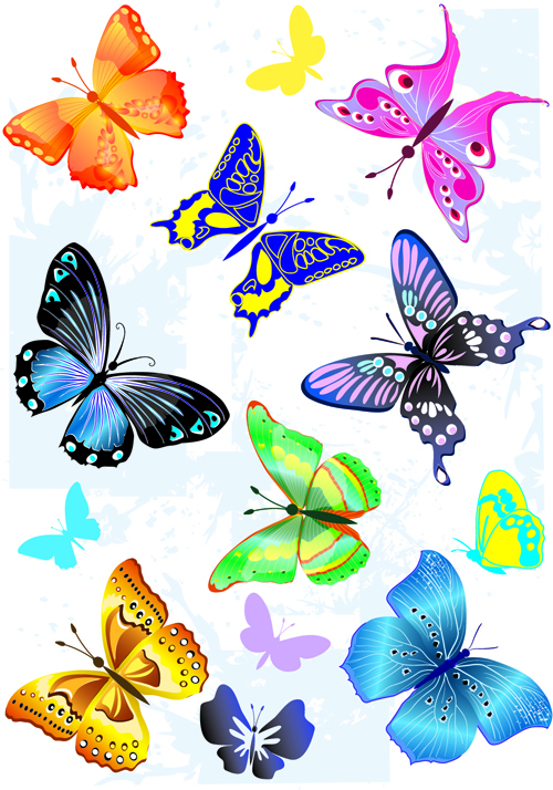 500x714 Sorts Of Butterflies Clip Art Vector Material 04