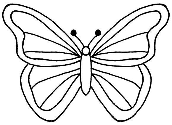 581x422 Best Butterfly Outline