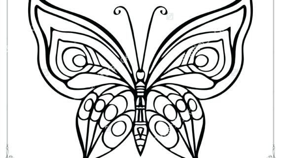 570x320 Butterfly Outline Images