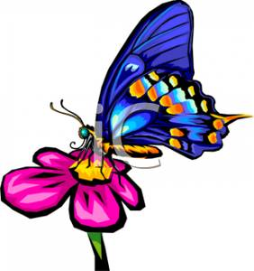 282x300 Art Image A Bright Blue Butterfly On A Pink Flower