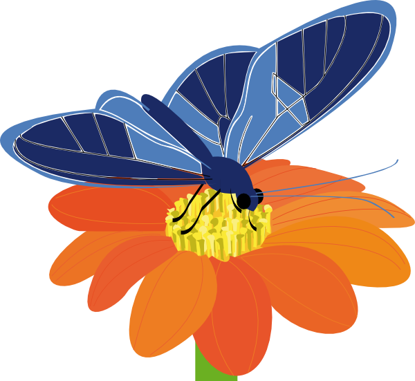 600x551 Blue Butterfly With Flower Clip Art