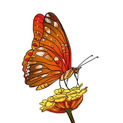 400x400 Top 83 Butterfly Clip Art