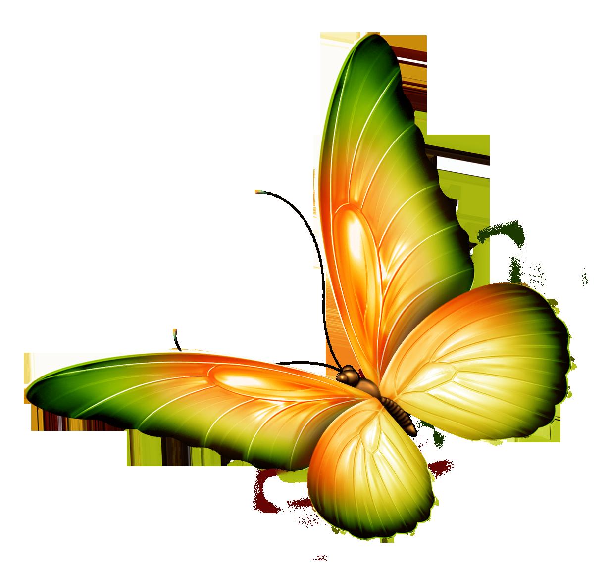 1232x1140 Top 87 Butterfly Clip Art