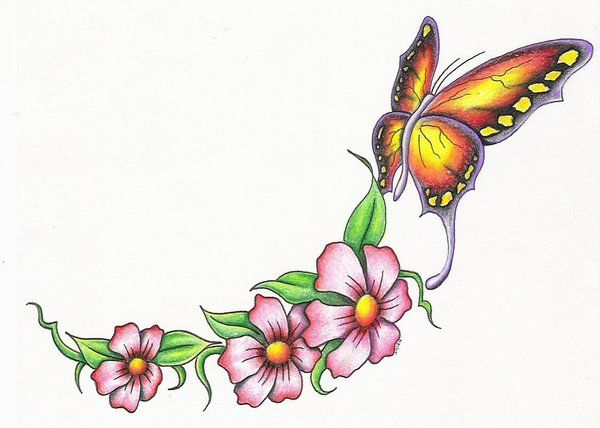 600x428 58 Best Butterflies Images Caterpillar, Anniversary