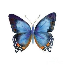 270x270 Butterfly Art Fine Art America