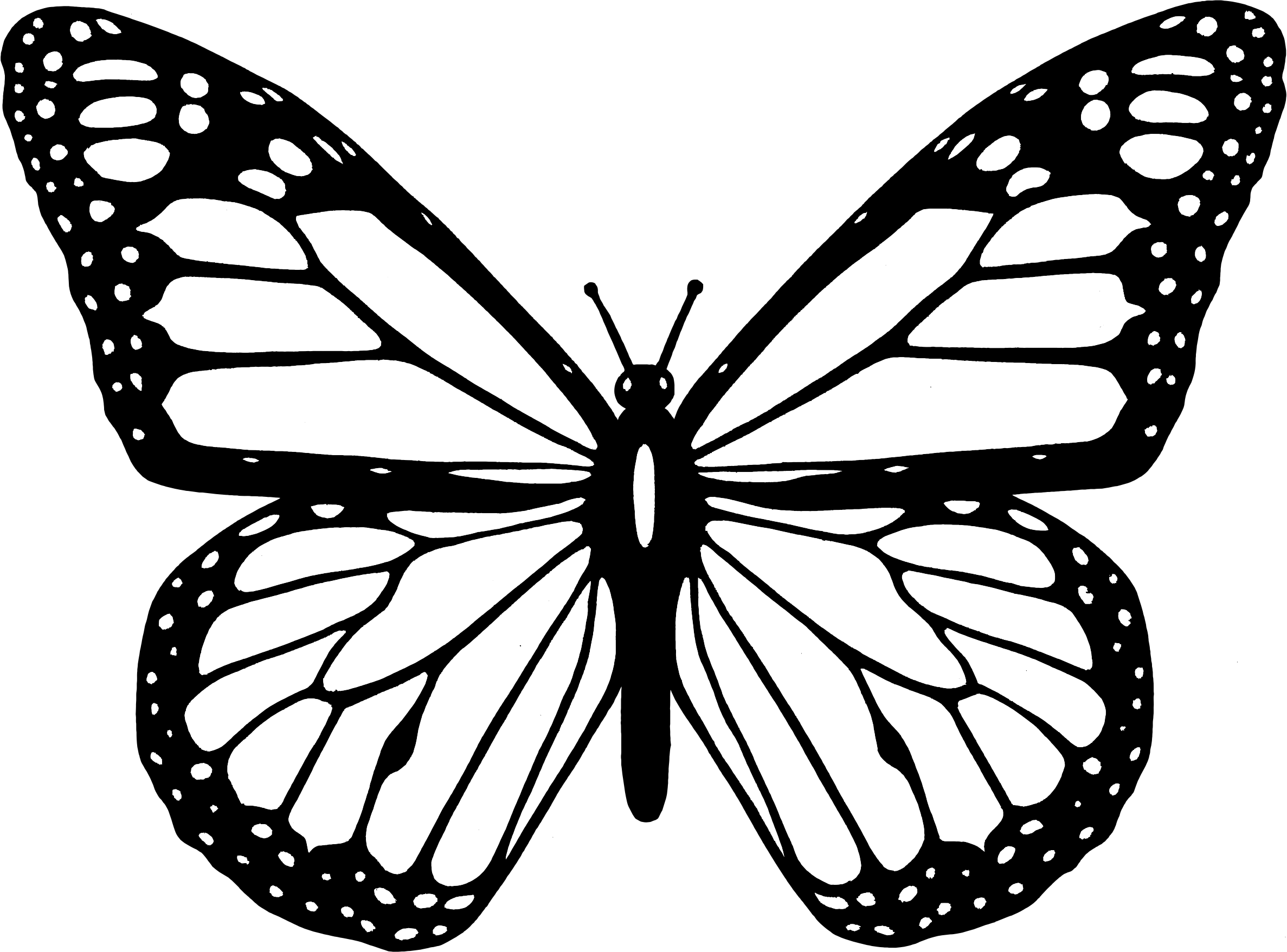 2374x1757 Butterfly Black And White Clipart Black And White Butterfly