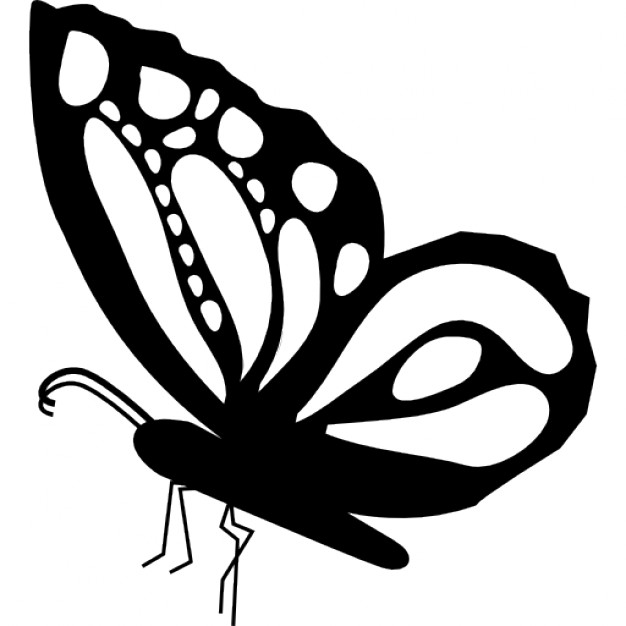 626x626 Monarch Butterfly Clipart Sideways