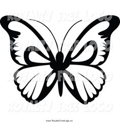 236x240 Best Photos Of Butterfly Outline Clip Art