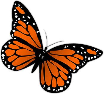 350x314 Monarch butterfly clip art