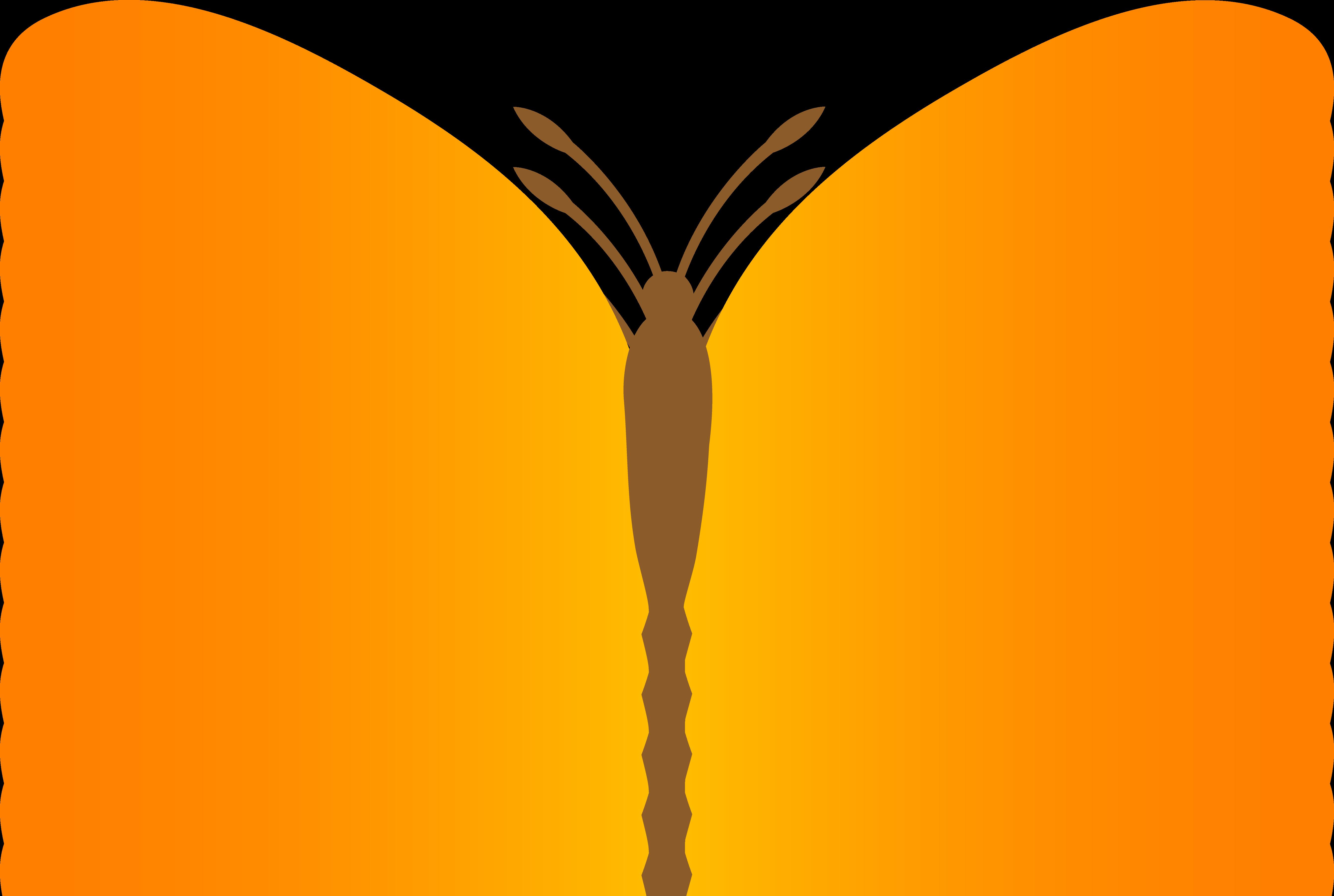 5381x3614 Simple Orange Butterfly