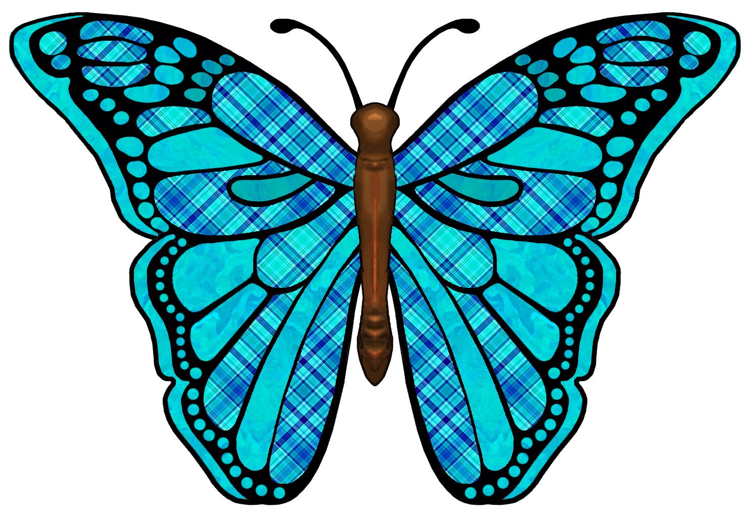 1484x1026 Symmetry clipart butterfly