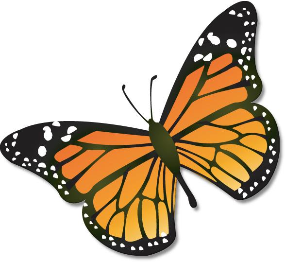 587x539 Butterflies butterfly clip art clipart