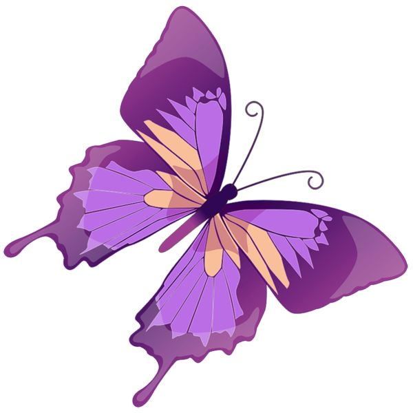 Butterfly Clipart Free