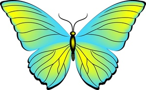 300x185 Butterfly Clipart Lime Green