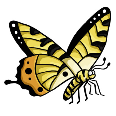 400x400 Free Butterfly Clip Art Drawings Andlorful Images 3
