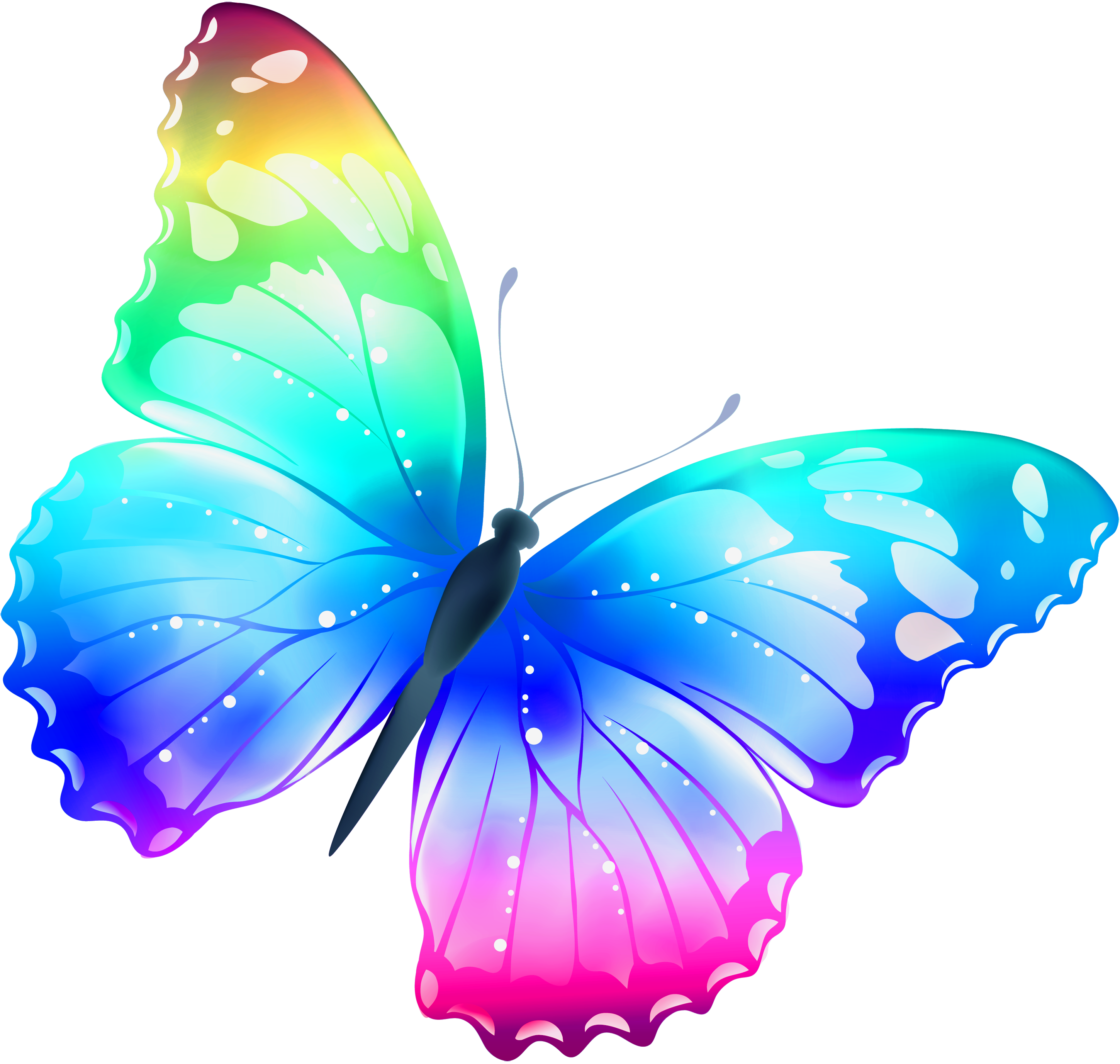 2900x2755 Large Transparent Multi Color Butterfly Png Clipartu200b Gallery