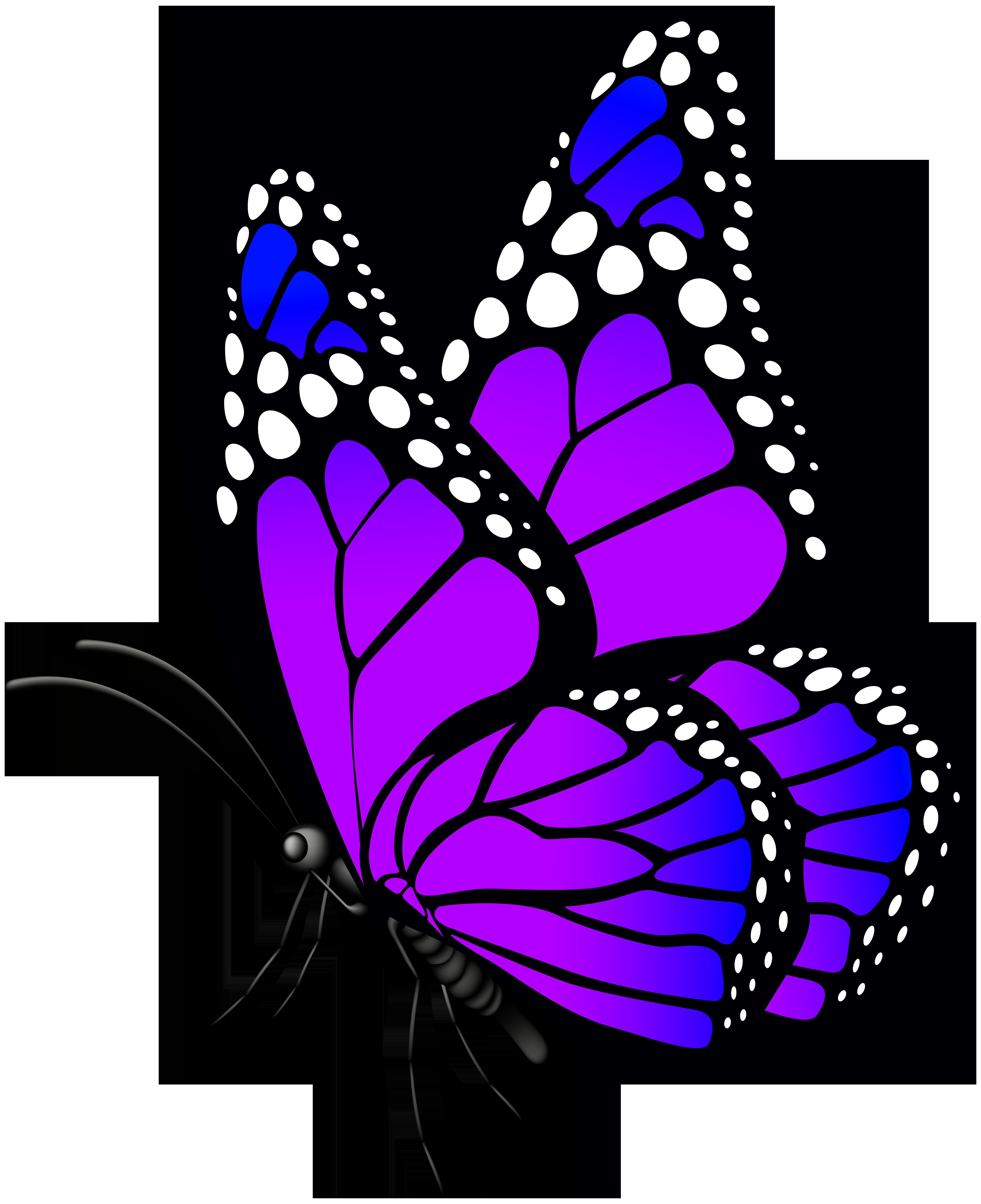 6521x8000 Butterfly Purple Png Clip Art Imageu200b Gallery Yopriceville