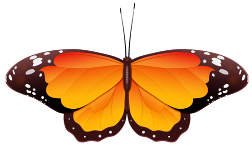 500x294 Butterfly Clip Art Photos Vector Clipart Royalty Free Images 1