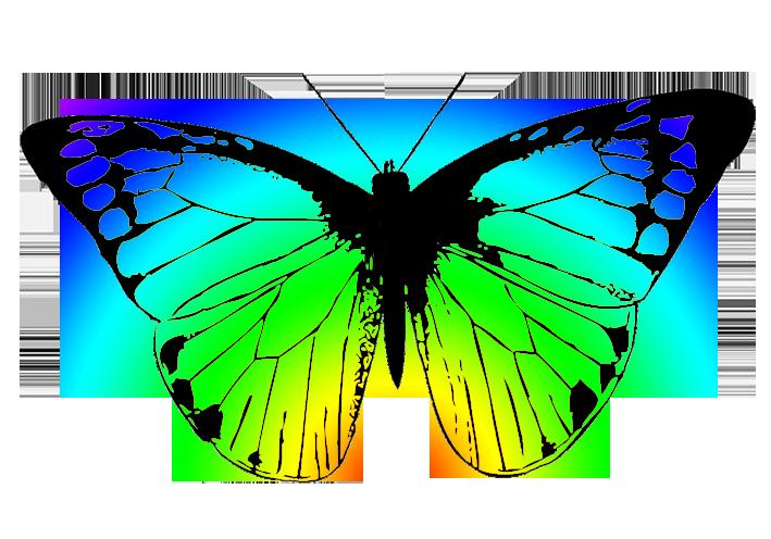 709x496 Butterflies Butterfly Clipart 3