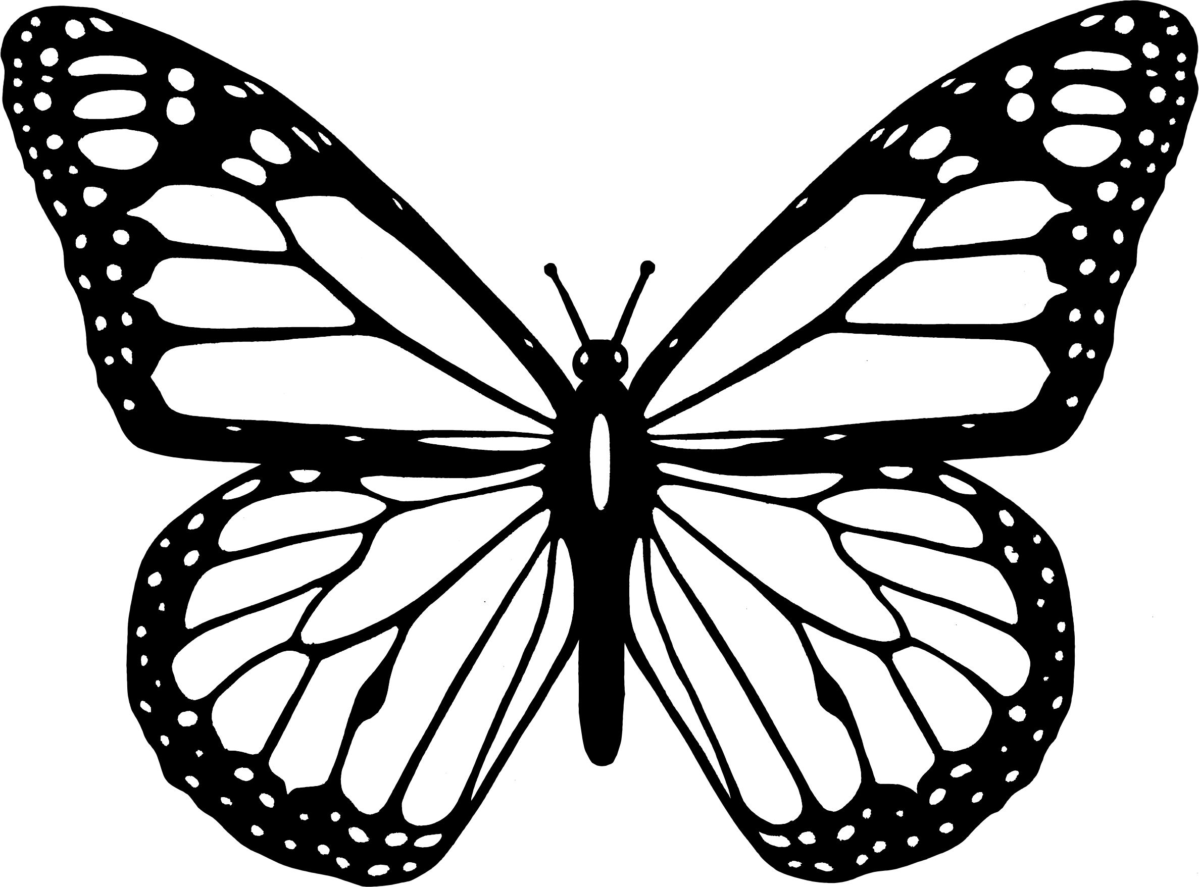 2374x1757 Butterfly Coloring Pages Ppinews.co