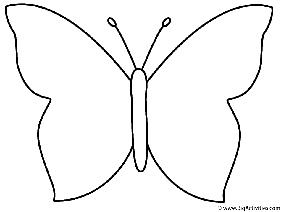 950x719 Simple Butterfly