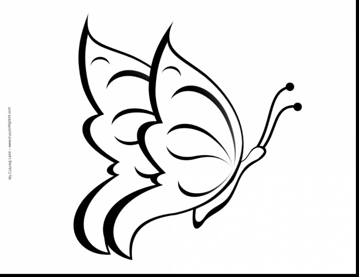 1161x897 Terrific Coloring Page Butterfly Colouring With Butterfly Color