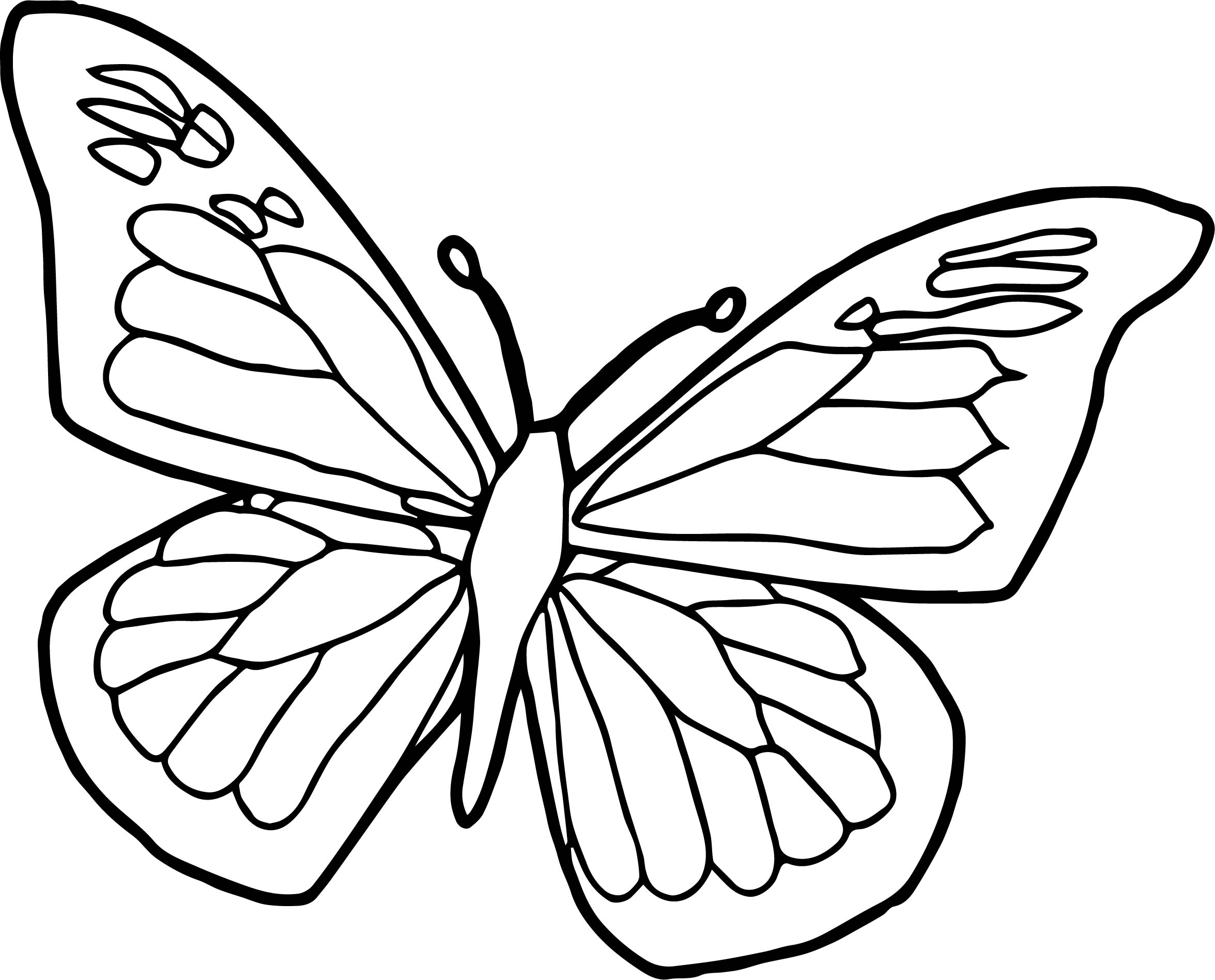 2351x1896 Blue Black Butterfly Coloring Page Wecoloringpage