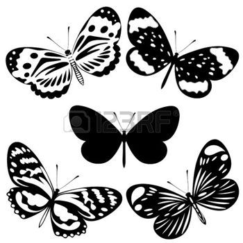 Butterfly Images Black And White