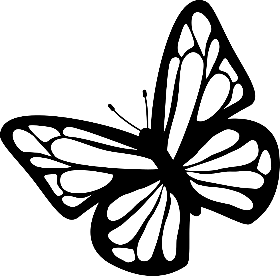981x968 Butterfly Black And White Png Clipart