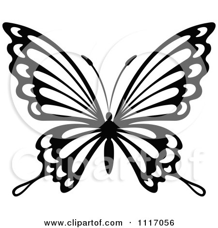 450x470 Royalty Free (Rf) Black And White Butterfly Clipart, Illustrations
