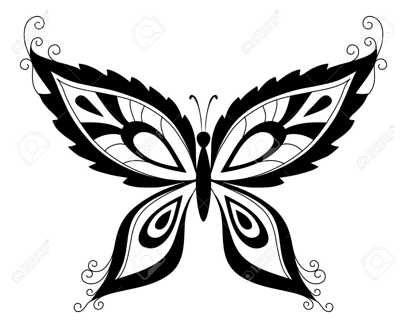 1300x1048 Abstract Butterfly, Black Contour Silhouettes On White Background