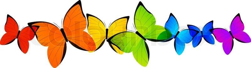 800x217 Butterfly Clipart Boarder