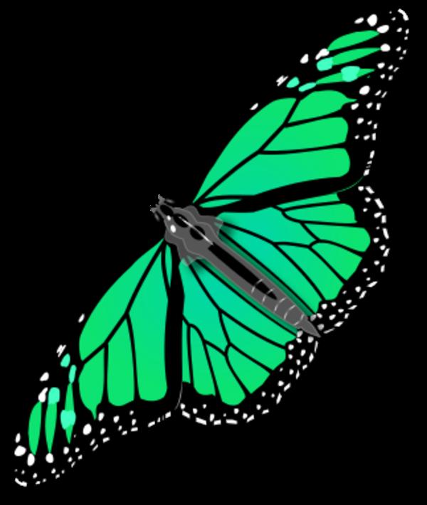 600x710 Monarch Butterfly Butterflies Images Clip Art Image