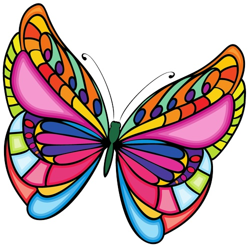 butterfly clipart evolution clipartmag