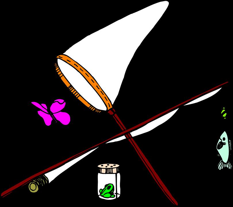 810x720 Fish Net Clipart Butterfly Net