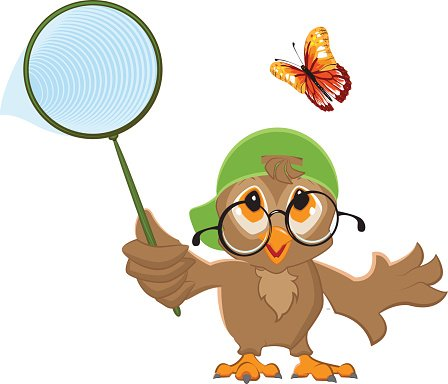 448x384 Owl Catches Bird And Butterfly Net Premium Clipart