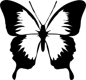 300x280 Butterfly Outline Clipart
