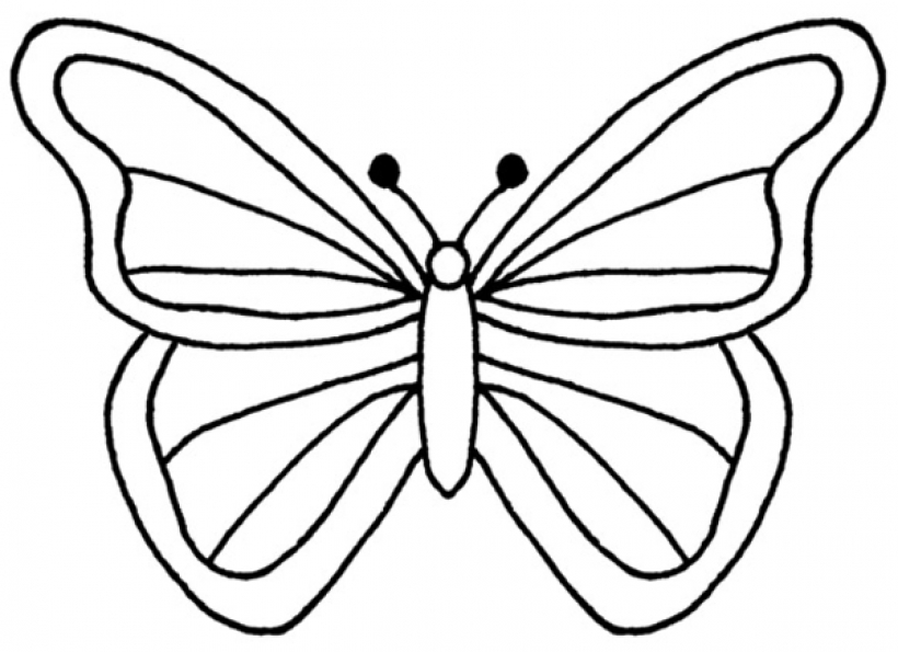 820x595 Clipart Butterfly Outline Clipartfest 2
