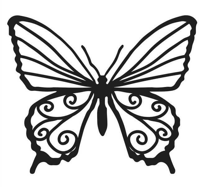 650x604 49 Views Birthday Butterfly Template, Chocolate