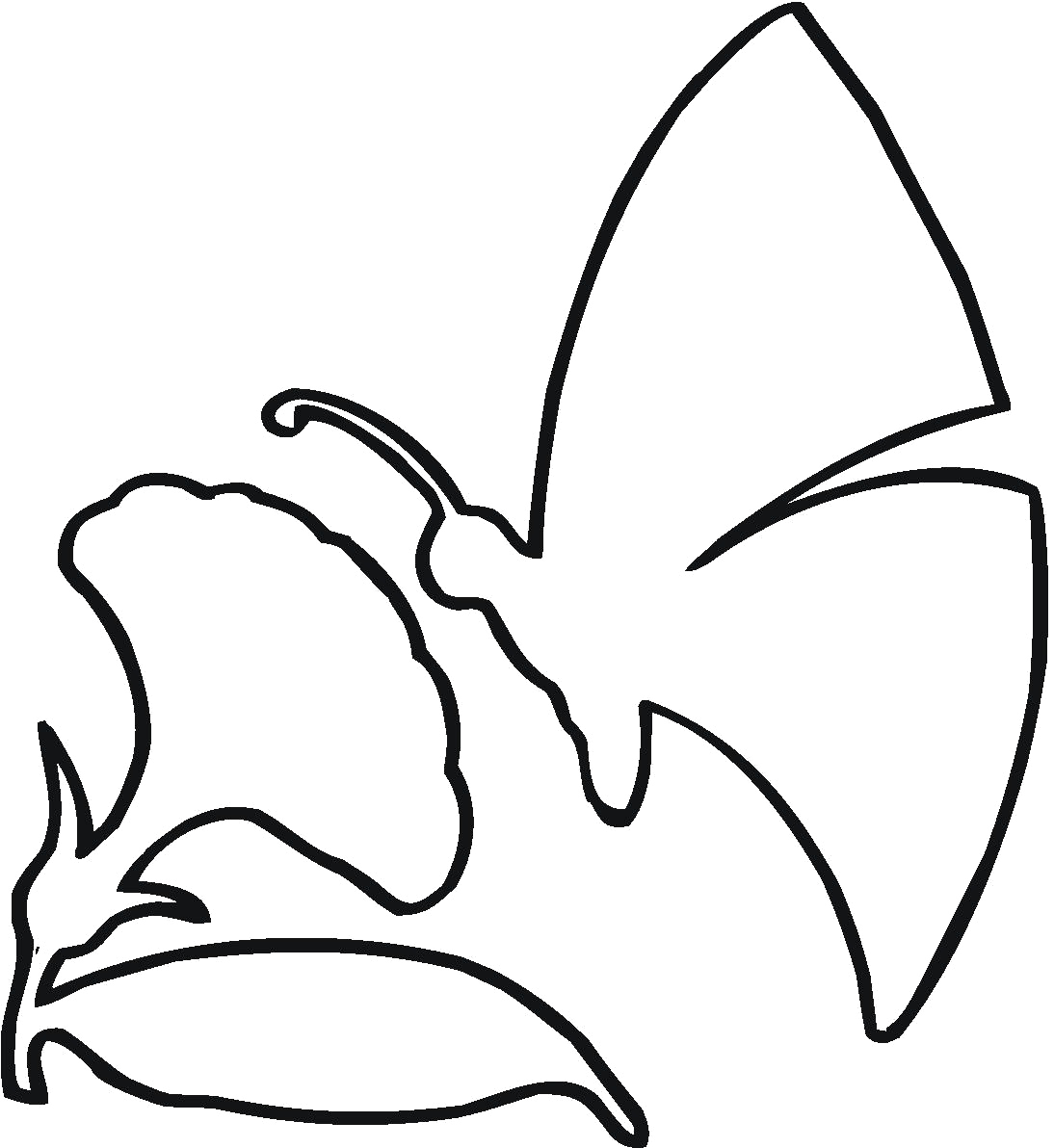Butterfly Outline Clipart | Free download best Butterfly Outline ...
