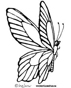 236x295 Butterfly Outline Arts and crafts Outlines